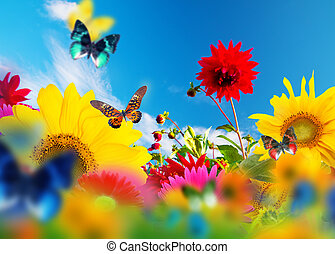 Sunny garden of flowers and butterflies. Colors of spring ...