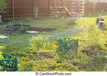 Sunny garden with green grass and bushes and small playground