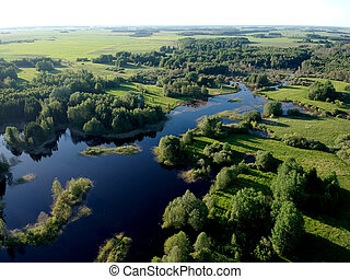 Sunny  lake landscape with trees in spring, aerial
