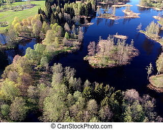 Sunny  lake landscape with trees in spring, aerial view