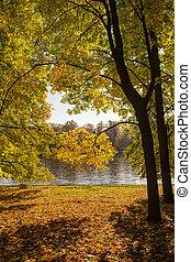 sunny landscape in autumn