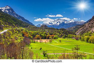 Sunny morning in alpine meadows. Alps, France.