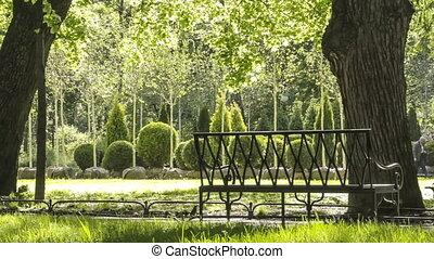Sunny morning in beautiful park
