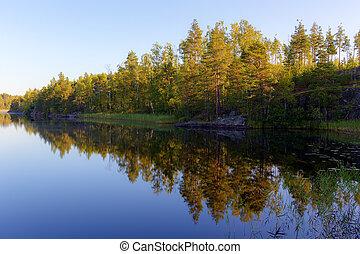 sunny morning landscape
