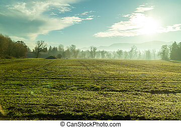 Sunny morning natural landscape with agricultural fields , Austria.