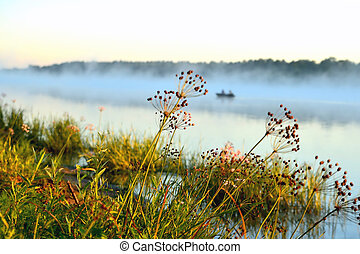 sunny morning on the river, plants, fog, boat, reflections in the water.