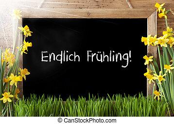 Sunny Narcissus, Chalkboard, Endlich Fruehling Means Finally Spring