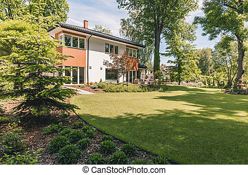Sunny outdoor and green lawn