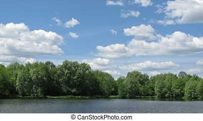 sunny pond time lapse