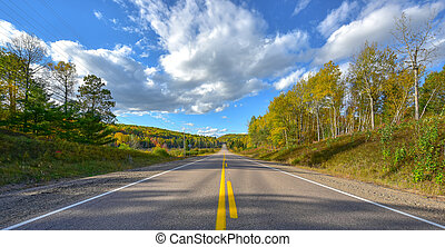 Sunny road to anywhere, single point perspective down a country highway in summer.