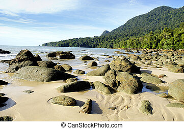 Sunny Seashore - A seashore filled with boulders.