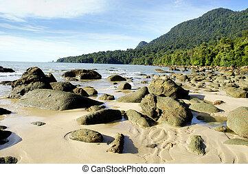 Sunny Seashore - A seashore filled with boulders.