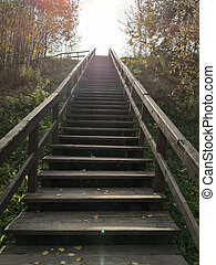 Sunny staircase in the autumn park