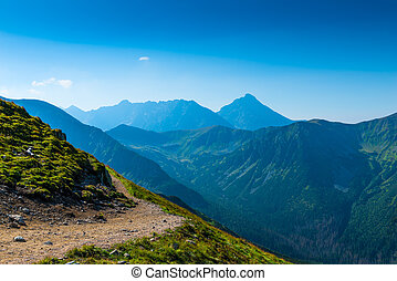 Sunny summer day on a high mountain in the Tatra Mountains, Poland