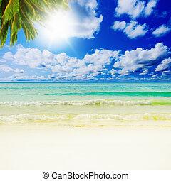 Sunny tropical beach on the island - Beautiful sunny...