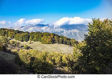 Abruzzo national park - sunny valley in Abruzzo national ...
