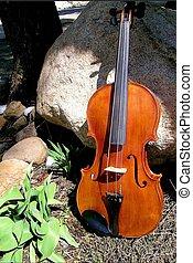 Sunny Violin