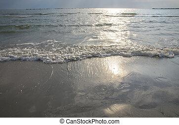 Sunny wave on the beach