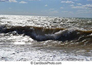 Sunny waves