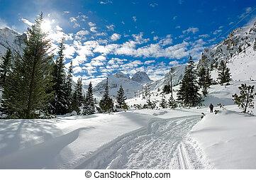 Sunny winter in mountain