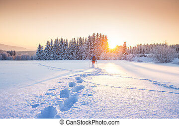 Sunny winter landscape in the mountains - Panorama of the ...