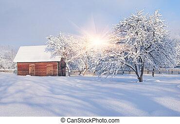 Sunny winter landscape in the village.