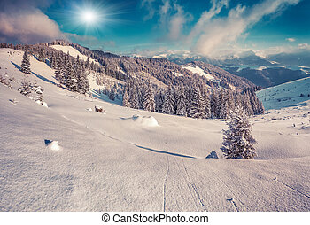 Sunny winter morning in the snowy mountains