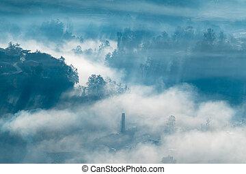 Sunrays in the Morning Fog