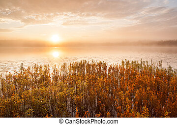 Sunrise at foggy lake
