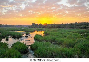 Dramatic sunrise at Kruger National Park, South Africa.