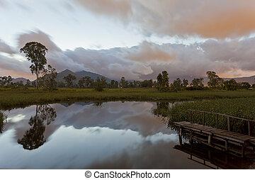 Sunrise at pond in wetland of Hong Kong