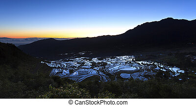 Sunrise at rice terrace fields in Yuanyang, Yunnan Province,...