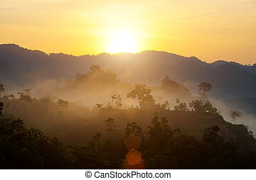 Sunrise at the fog mountains in the summer.