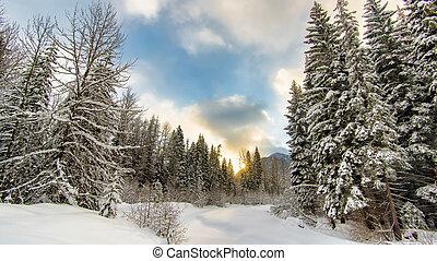 Sunrise behind a winter wonderland - Winter forest with...