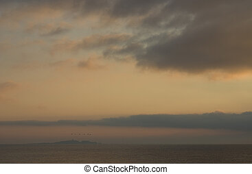 Sunrise behind the Isle of May, an island in the Firth of Forth, Scotland, UK, Europe, featuring a pale orange sky and a flock of birds passing the isle. View from Pittenweem, East Neuk, Fife.