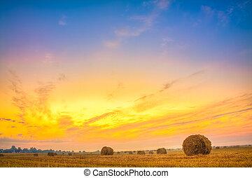 Sunrise field, hay bale in Belarus.
