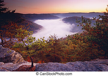 Auxier Ridge - Sunrise from Auxier Ridge showing fog laden...