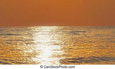 sunrise golden sea slow motion 4k 60fps