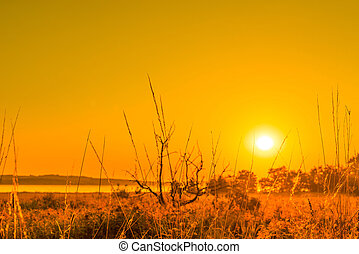 Sunrise in a countryside scenery