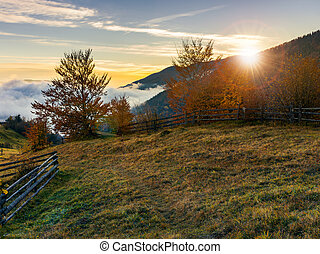 sunrise in carpathian rural area. fence and trees along the...