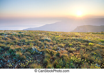 Sunrise in summer mountains