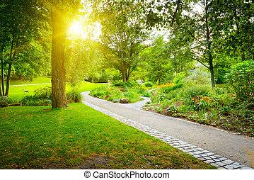 Sunrise in the beautiful park
