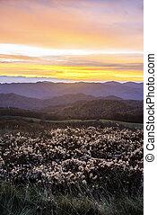 Sunrise in the Blue Ridge Mountains.