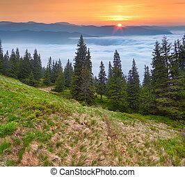 Sunrise in the Carpathian mountains. Ukraine, Europe.