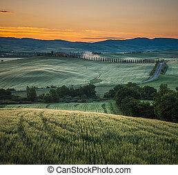 sunrise in tuscany, typical tuscan landscape - image of...