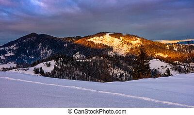 sunrise in winter carpathians - mountain peaks in snow on...