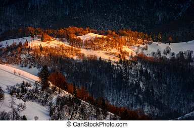 sunrise in winter mountains - mountain hills with forest in...