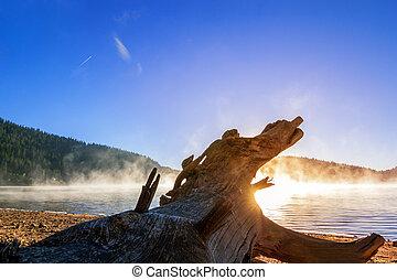 Sunrise lake in fog