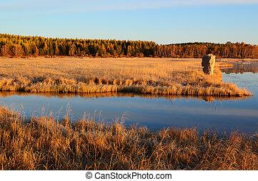 Sunrise landscape of lake in grassland