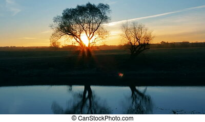 sunrise landscape with tree and lake - timelapse